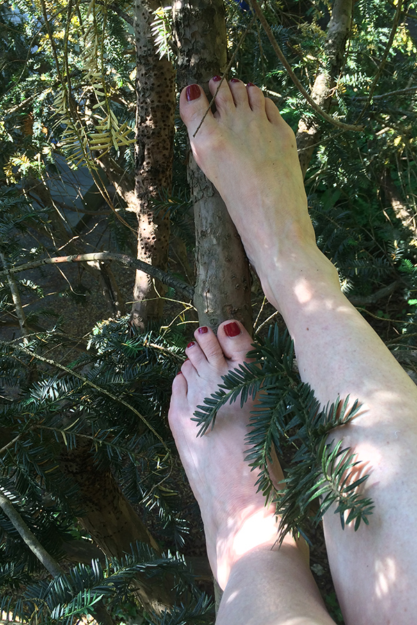 Feet in Tress